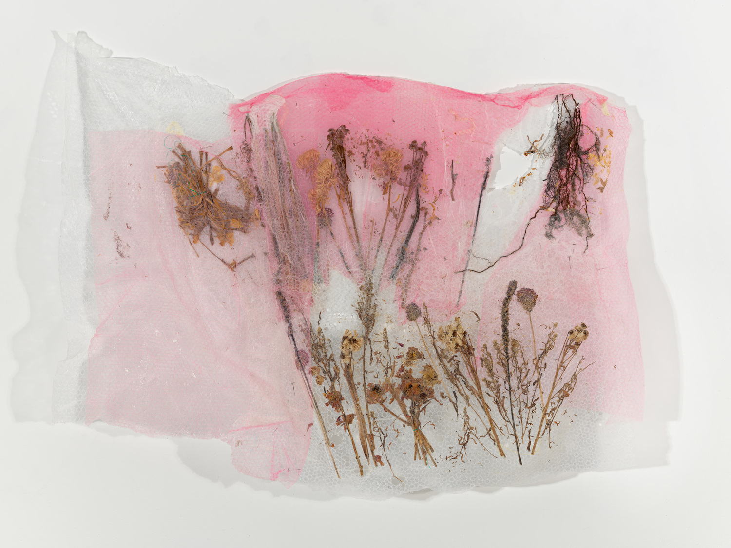 Jaclyn Mendicov, Flowers (bubble wrap), 36 x 42 inches, bubble wrap and dried flowers, 2015.